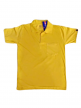 Online Branded Men T-Shirts